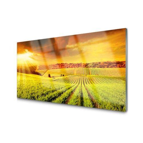 Panel Kuchenny Pole Zachód Słońca Krajobraz