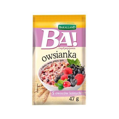 Bakalland 47g ba! owsianka z owocami leśnymi