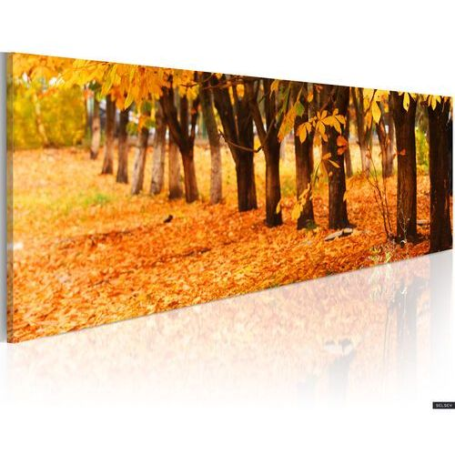 Selsey obraz - park covered with golden leaves 120x40 cm