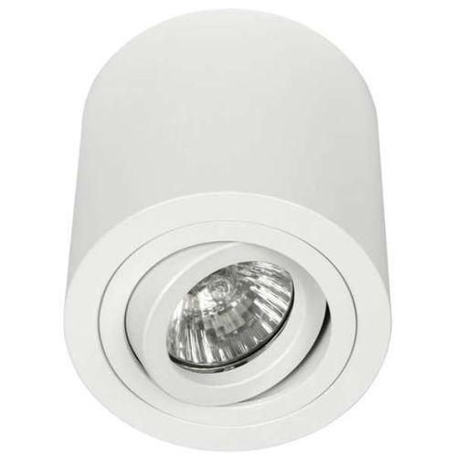 Spot LAMPA sufitowa RULLO bianco Orlicki Design regulowana OPRAWA metalowa downlight tuba biała, kolor Biały