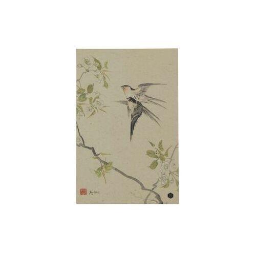 Be Pure Plakat z papieru Swallows rozmiar XL 800961-P, 800961-P