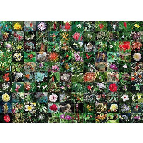 Puzzle Blossoms 1000