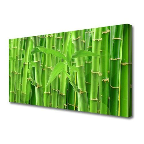 Obraz na płótnie bambus łodyga kwiat roślina marki Tulup.pl