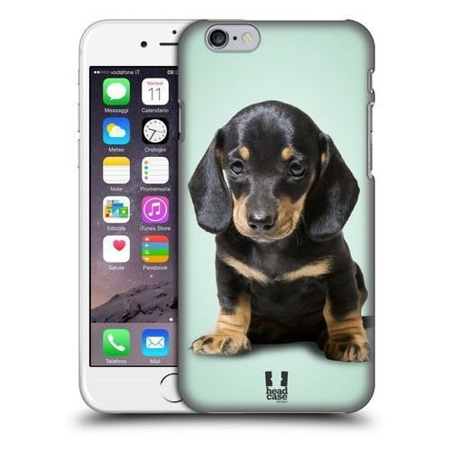 Etui plastikowe na telefon - popular dog breeds sitting dachshund puppy, marki Head case