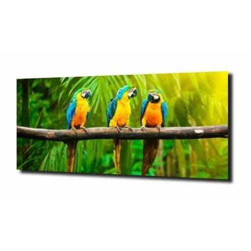 Zahartowani.pl Obraz na szkle papugi drzewo liście 100x80