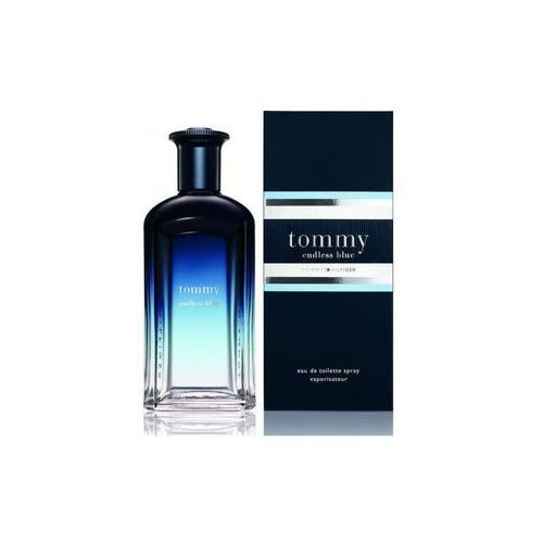 Tommy Hilfiger Tommy Endless Blue Men 100ml EdT