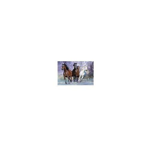 Konie (w biegu) - plakat (5028486070121)
