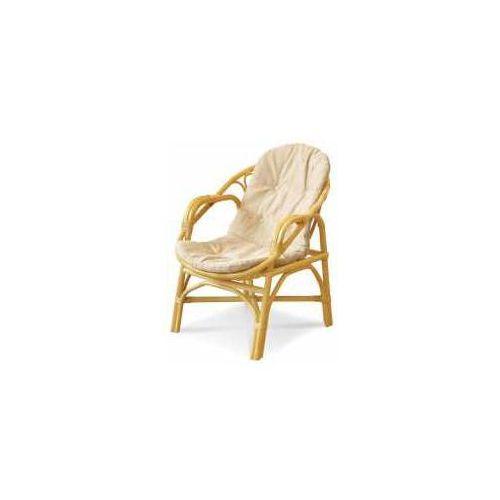 Fotel 02/04/b marki Calamus rotan