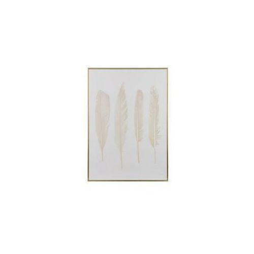 Obraz dekoracyjny Feathers 4, 149956 (11997697)
