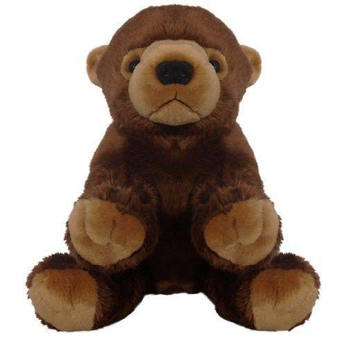 Beppe Pluszak zoo niedzwiedź brunatny 25 cm