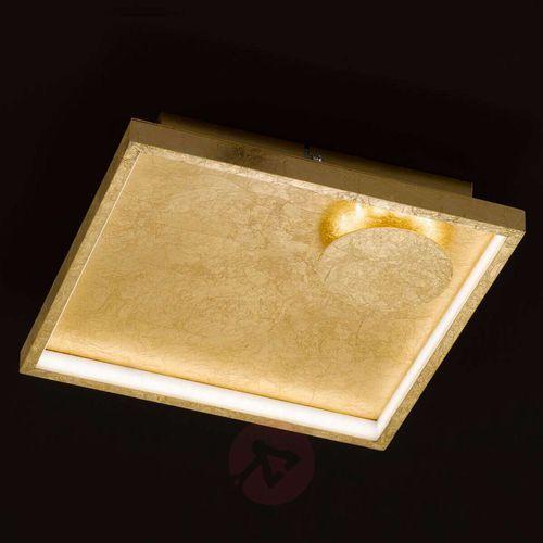Wofi Letizia - kwadratowa lampa sufitowa led, złota