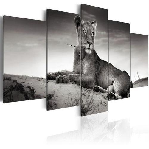 Artgeist Obraz - lwica na pustyni