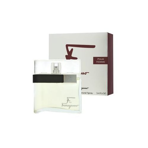 Salvatore Ferragamo F By Ferragamo Men 100ml EdT