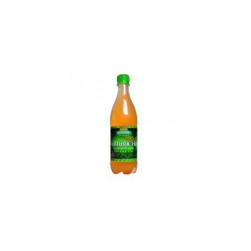 Kombucha herbata zielona Bio 500ml