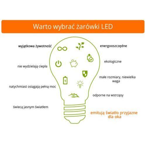 Świetlówka LED T8 60 cm 10W 950lm TUBA S10
