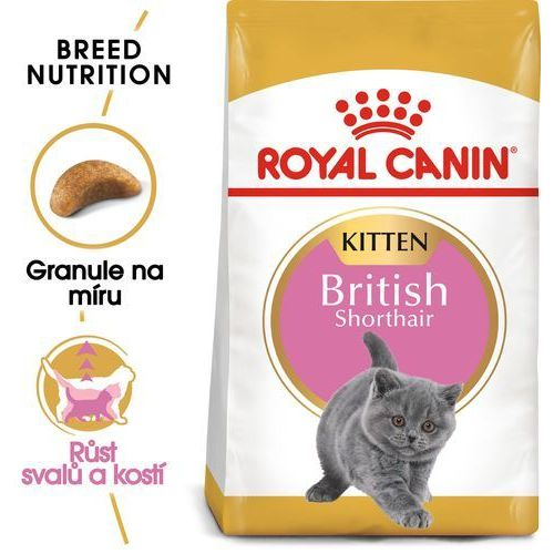 (bez zařazení) Rc cat kitten british shorthair - 10kg