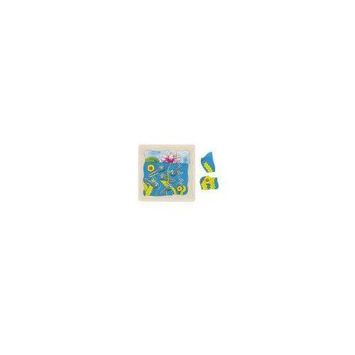 Puzzle warstwowe, etapy rozwoju żaby, 4 obrazki, 44 el.