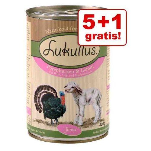 Lukullus 5 + 1 gratis! junior, 6 x 400 g - serca indycze z jagnięciną