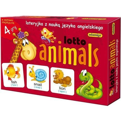 Lotto animals marki Adamigo