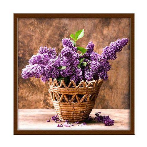 Obraz fioletowy bez 30 x 30 cm marki Knor