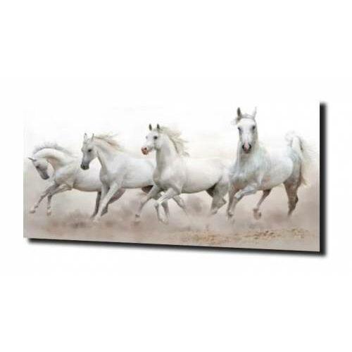 obraz na szkle, panel szklany Białe konie 2 125X50, D834