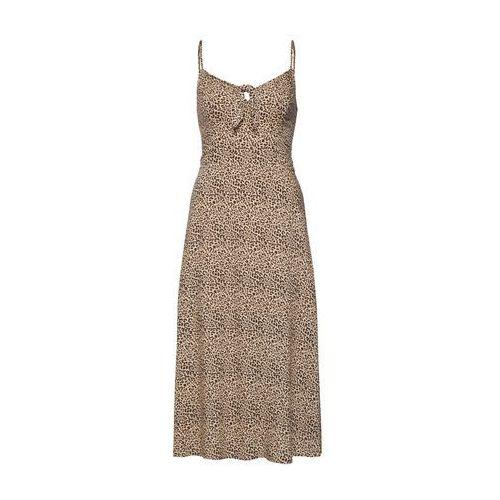 letnia sukienka 's119-bare' jasnobrązowy / czarny, Hollister, 34-40
