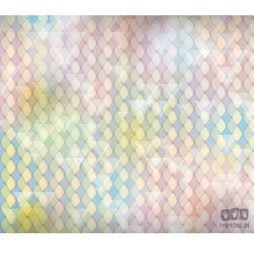 Fototapeta klasyczne romby i białe trójkąty – wyblakłe pastele w wielu odcieniach 1474 marki Consalnet