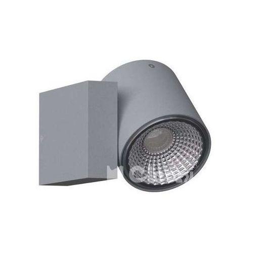 Kinkiet lampa ścienna tito t113s1+kolor matalowa oprawa regulowana tuba marki Cleoni
