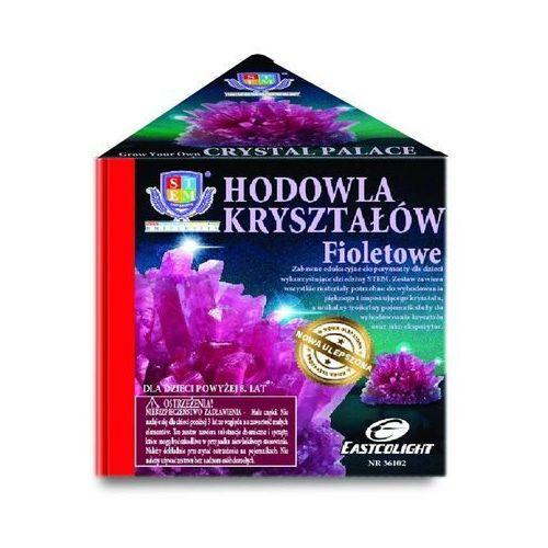 Russell Zestaw naukowy hodowla kryształów - fioletowe - darmowa dostawa od 199 zł!!! (4893669361027)