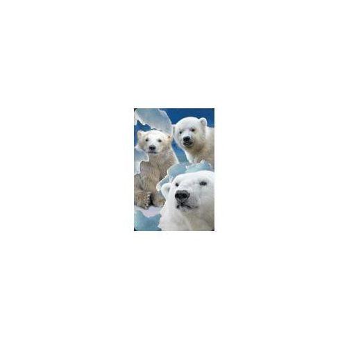 Worth keeping Minikartka 3d - niedźwiedzie polarne - worth-keeping od 24,99zł darmowa dostawa kiosk ruchu (5710431001112)