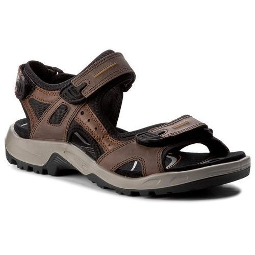 Sandały ECCO - Offroad 06956456401 Brown/Black