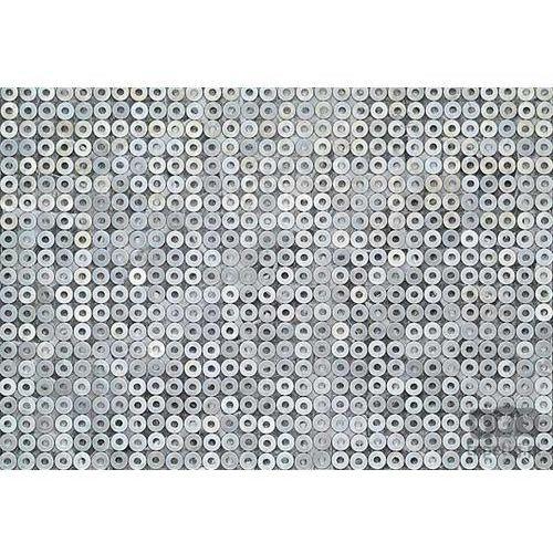 Fototapeta metal rings 8-701 marki Komar