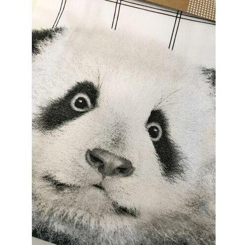 Pt Ręcznik kuchenny panda 50x70cm