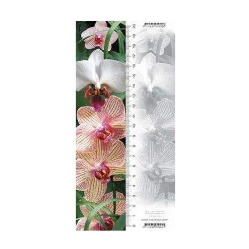 Zakładka 3D Orchidea