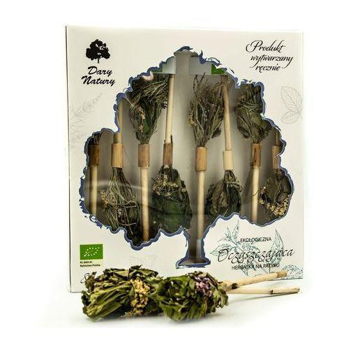 Dary natury - herbatki bio Herbatka na patyku oczyszczająca bio (8 x 2,5 g) - dary natury (5903246862416)