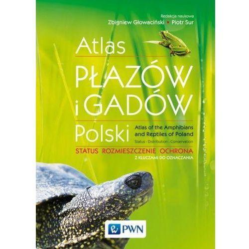 Atlas płazów i gadów Polski, oprawa miękka - OKAZJE