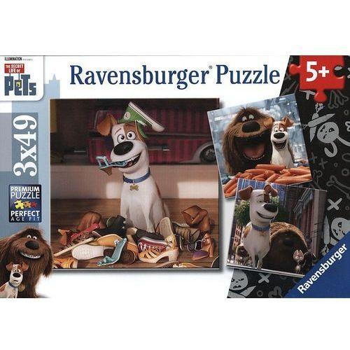 Ravensburger Puzzle 3 x 49 elementów - sekretne życie zwierzaków 094134 (4005556094134)