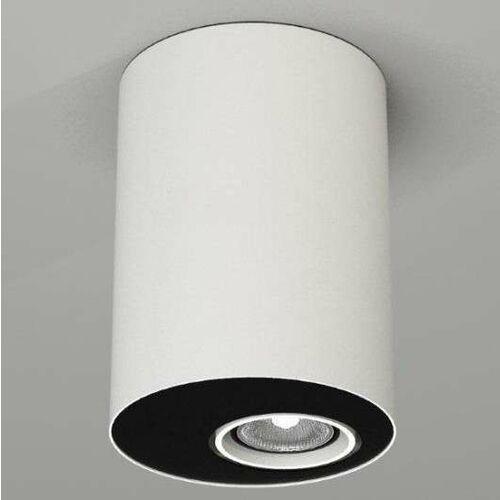 Downlight lampa sufitowa toki 7029 natynkowa oprawa reflektorowa tuba biała marki Shilo