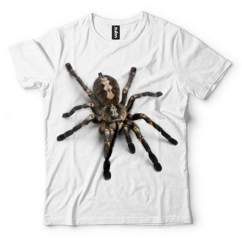 Tulzo Pająk tarantula