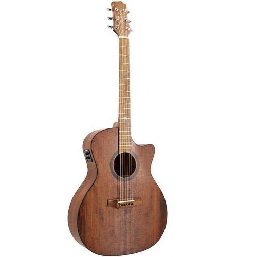 rgi 14vt ce gitara elektroakustyczna marki Randon