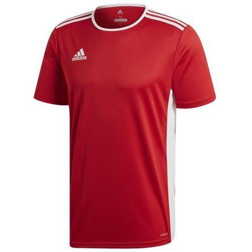 Koszulka entrada 18 cf1038 marki Adidas