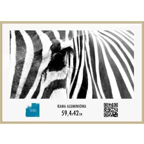Rama aluminiowa 59,4x42 cm od producenta Brak