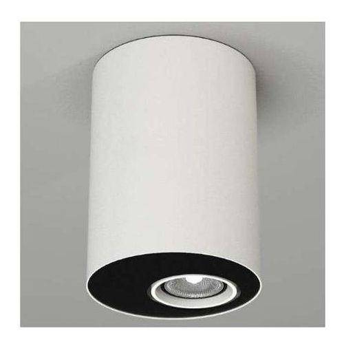 Downlight lampa sufitowa toki 1124/gu10/bi natynkowa oprawa reflektorowa okrągła biała marki Shilo