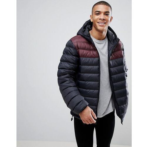French Connection Padded Hooded Jacket with Contrast Panel - Black