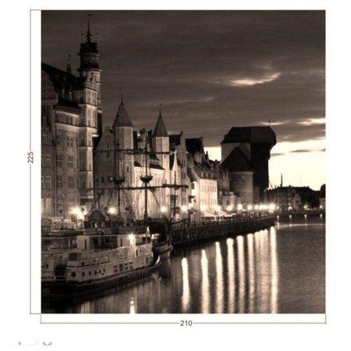 Indywidualna fototapeta gdańsk panorama żuraw 293 kolorystyka sepia 210x225 marki Deco-strefa – dekoracje w dobrym stylu