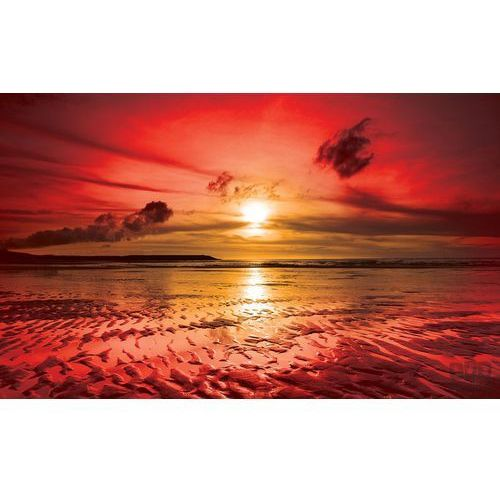Consalnet Fototapeta różowy zachód słońca na plaży 263