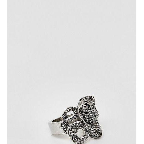 Sacred Hawk snake ring - Silver