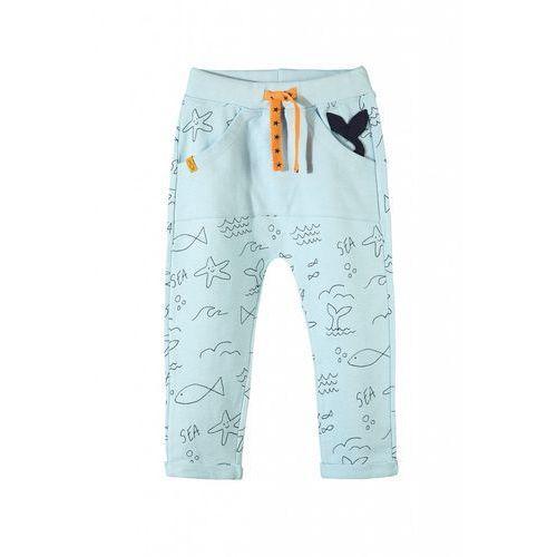 Spodnie dresowe niemowlęce 5m3419 marki 5.10.15.