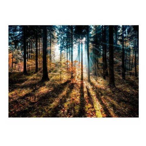 Obraz Glasspik Autumn Sunset 70 x 100 cm (5902841509900)