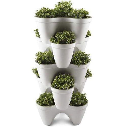 Keter Doniczka do ziół ivy planter biało-zielony